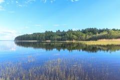 Sjö, skog och klar himmel Royaltyfria Foton