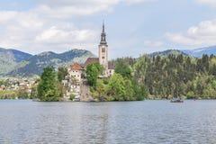 Sjö som blödas i Slovenien, vår 2015 Royaltyfri Bild
