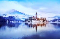 Sjö som blödas i vintern som blödas, Slovenien, Europa Royaltyfria Foton