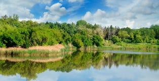Sjö, sommarskog på bankerna och himmel Royaltyfria Bilder