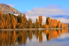 Sjö Wanaka, södra ö Nya Zeeland Royaltyfri Bild