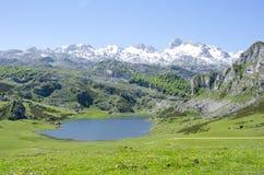 Sjöar av Covadonga Royaltyfri Bild