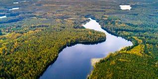 Sjöar i skogen, flygfotografering arkivbild