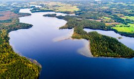 Sjöar i skogen, flygfotografering fotografering för bildbyråer