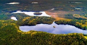 Sjöar i skogen, flygfotografering arkivbilder