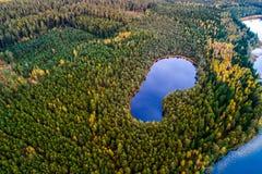 Sjöar i skogen, flygfotografering arkivfoto