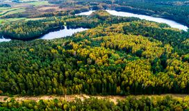 Sjöar i skogen Litauen royaltyfria foton