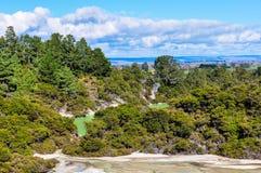 Sjöar i Wai-o-tapu det geotermiska området, nära Rotorua, nya Zeala royaltyfri foto