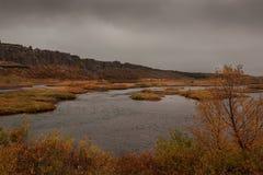 Sjöar med den gula vegetation- och bergkanten i bakgrunden iceland royaltyfri fotografi