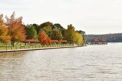 Sjöbana med träd för nedgånglövverk royaltyfri fotografi