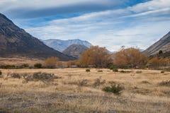SjöColeridge högt land Arkivfoto