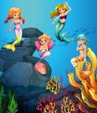 Sjöjungfruar som simmar under havet Arkivbilder