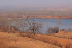 Sjölandskap i vinter Fotografering för Bildbyråer
