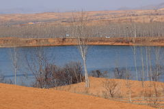 Sjölandskap i vinter Arkivbilder