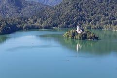 Sjön blödde Slovenien Arkivbilder