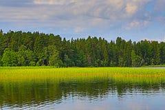 Sjön förläggas på en Novgorod region Arkivfoto