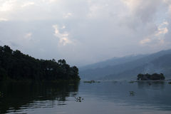 Sjön i dimman Arkivbild