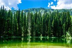 Sjön i Durmitor parkerar Royaltyfri Bild