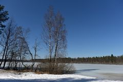 Sjön i Karelia täckte med snö och is Arkivbilder