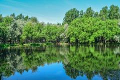 Sjön i stad parkerar i klar solig dag royaltyfria foton