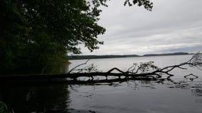 Sjön norrviken den Sverige naturen Royaltyfri Fotografi