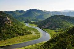 Sjön och bergen - Skadar sjönationalpark - Montenegro royaltyfri bild