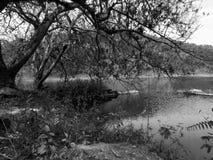 Sjön och fördärvar Arkivbild