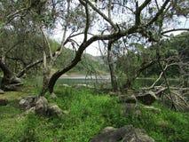Sjön och fördärvar arkivfoto