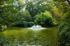 Sjön och fontain inom det naturliga stads- parkerar på Allieren lakeshore i Vichy, Frankrike Royaltyfri Fotografi