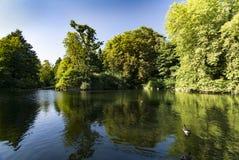 Sjön och grönska på Christchurch parkerar i den Ipswich suffolken Royaltyfria Foton