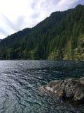Sjön och sörjer träd arkivfoton