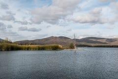 Sjön på Otay sjölänet parkerar arkivfoto