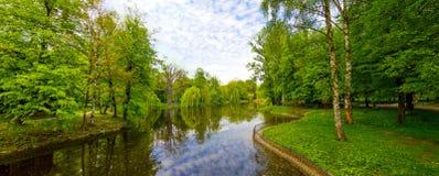 Sjön parkerar in panorama med gröna träd och blått vatten Royaltyfri Fotografi