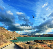 Sjön Pehoe Arkivbild
