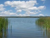 Sjön Zierker ser, Neustrelitz, Mecklenburg sjöområdet, Tyskland arkivfoton