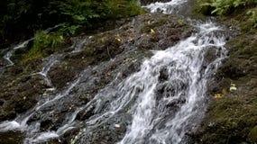 Sjöområdesvattenfall royaltyfri fotografi