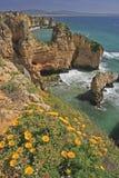 Sjösidaklippor, Algarve, Portugal Arkivbilder