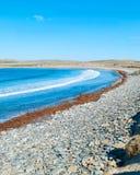 Sjösidalandskap Royaltyfria Bilder