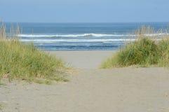 Sjösidastrand och Stilla havet - Oregon Royaltyfria Bilder