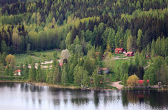 Sjösikt med skogen royaltyfria foton