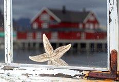 Sjöstjärna bak det gamla fönstret Arkivfoto