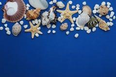 Sjöstjärna med skal och stenar mot en blå bakgrund med kopieringsutrymme holliday sommar Nautiskt Marrine begrepp arkivbilder