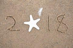 Sjöstjärna 2018 och feath för nytt år Royaltyfria Bilder