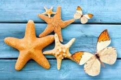 Sjöstjärna och fjäril på den blåa träbakgrunden sommar för snäckskal för sand för bakgrundsbegreppsram Arkivbilder