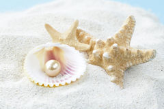 Sjöstjärna och skal med pärlor på sanden Fotografering för Bildbyråer