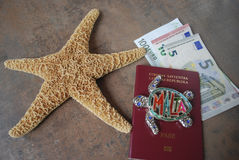 Sjöstjärna på översikten, eurosedlar, kreditkortbakgrund Arkivbild