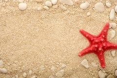 Sjöstjärna på den kust- sanden Arkivfoto
