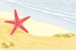 Sjöstjärna på den sandiga stranden Royaltyfria Bilder