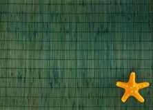 Sjöstjärna på grön bambubakgrund Arkivfoto