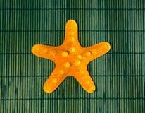 Sjöstjärna på grön bambubakgrund Arkivbild